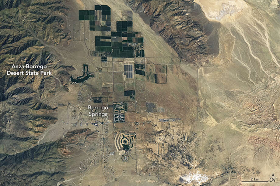 A satellite photo shows Anza-Borrego State Park on March 23, blanketed in wildflowers and vegetation after heavy winter rains. Photo: Nasa