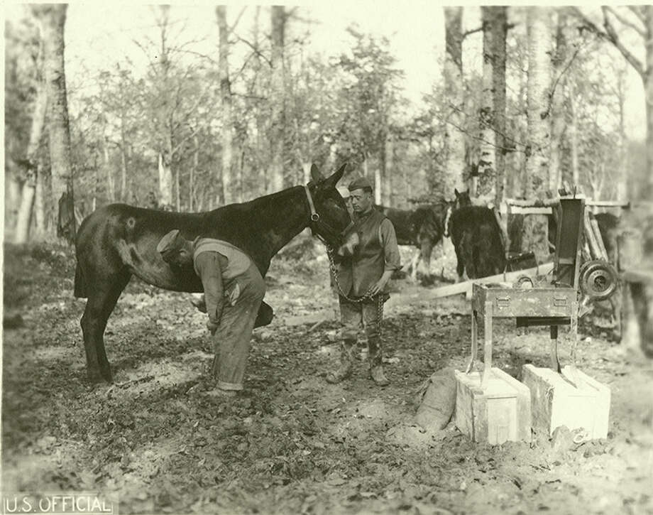 """Original caption: """"One of the Hard Tails of the Supply Co. 130th Infantry, 33d Division, being shod, near Mouilly, Meuse, France."""" circa 1918. Photo: Courtesy U.S. Army Heritage And Education Center"""