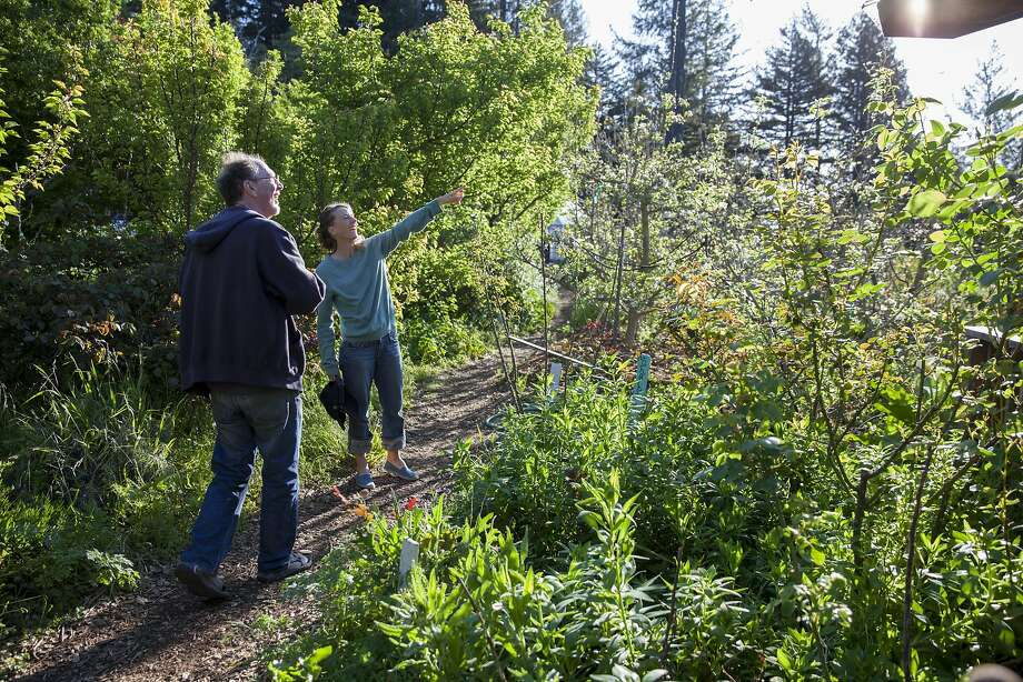 Julia Mitchell and Doug Or explore the Alan Chadwick Garden at UC Santa Cruz. Photo: Peter DaSilva