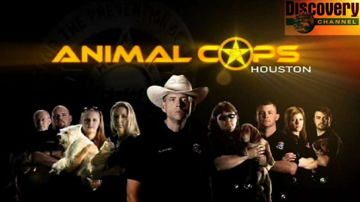 ANIMAL COPS: HOUSTON (2003 - 2012) This reality series focused on the work of the Houston Society for the Prevention of Cruelty to Animals, and was filmed in Houston and Harris County.