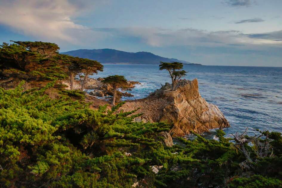 Lone cypress on the coast, 17-Mile Drive, Monterey Peninsula, California, USA.