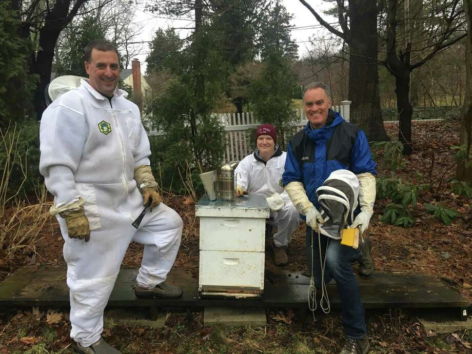 From the left, Steve Smith, Mark Carey and Jim Funk inspect hive where bees did not survive. Photo: Contributed / Contributed Photo / Fairfield Citizen