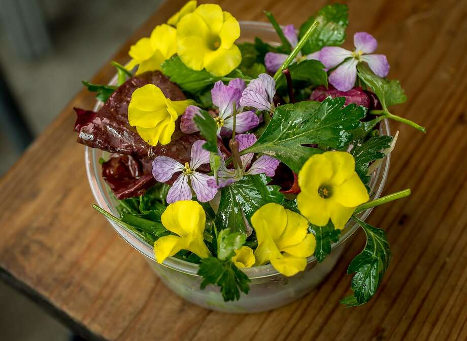 The herb salad at Dad's Luncheonette in Half Moon Bay. Photo: John Storey, Special To The Chronicle