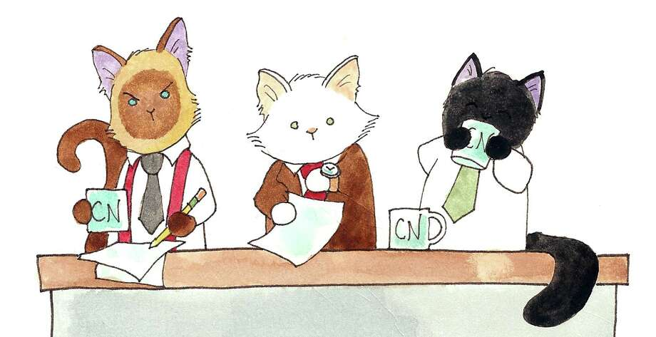 "(Left to right) Elvis, Lupin and Puck, the stars of the webcomic and now newspaper comic ""Breaking Cat News"" by Georgia Dunn. Photo: Courtesy Andrews McMeel Syndication"