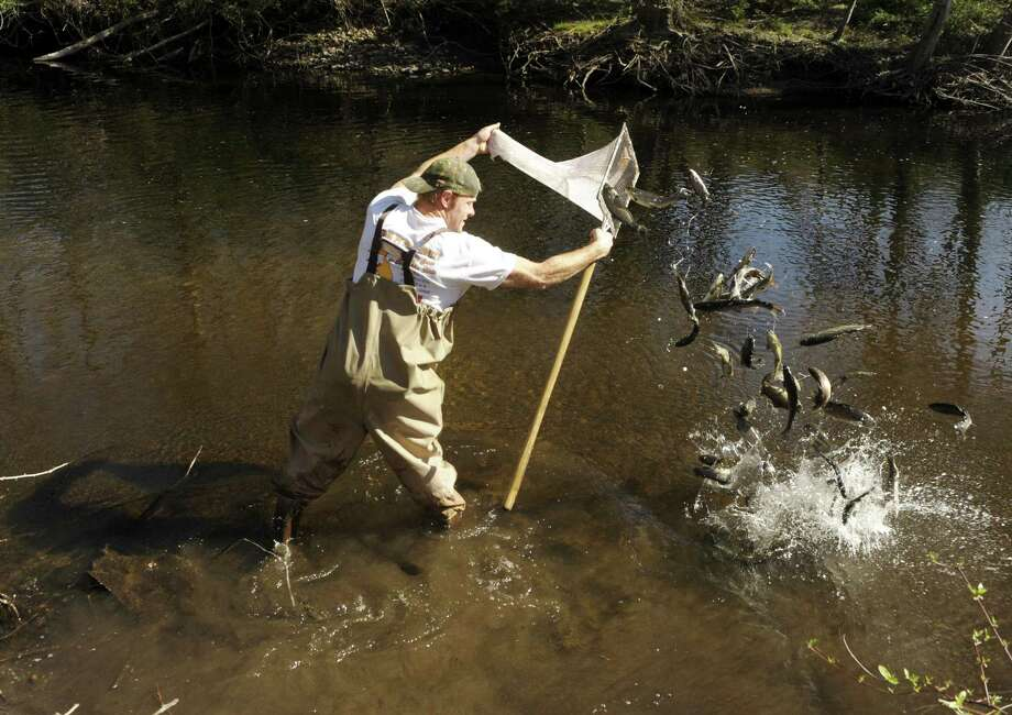 State reduces trout stocking for fishing season for Ct fishing season