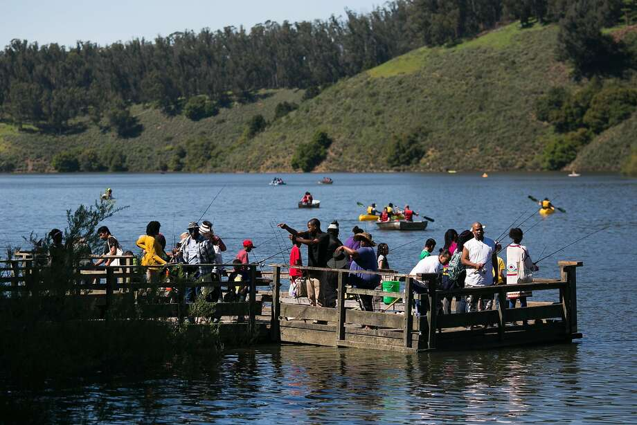 Kids and families fish along the docks at Lake Chabot. Photo: Mason Trinca, Special To The Chronicle