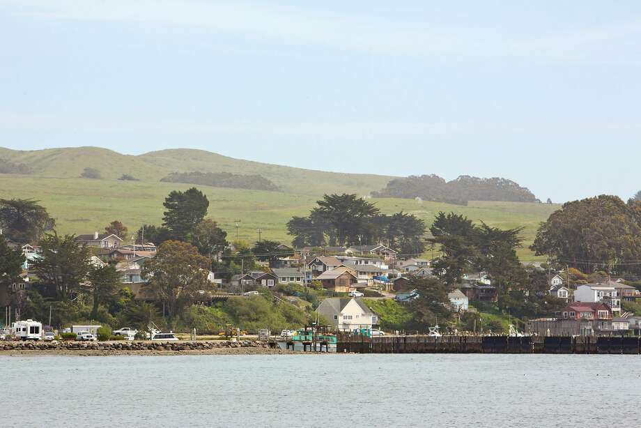 Bodega Bay, CA Photo: Vivian Johnson / Special To The Chronicle