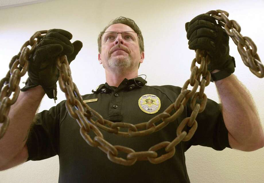 Shannon Sims, assistant director of Animal Care Services, holds a heavy chain that was taken off of a medium-size dog in San Antonio. Sims testified last month about the House version of legislation that would strengthen the current state law on tethering. The bill would ban chains. Photo: Billy Calzada /San Antonio Express-News / San Antonio Express-News