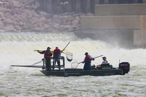 Working in the roiling waters of Lake Livingston Dam's tailrace, a Texas inland fisheries crew uses an electrofishing boat to stun and then net adult striped bass for a hatchery program that fuels the state's striped-bass and hybrid striped-bass fisheries.