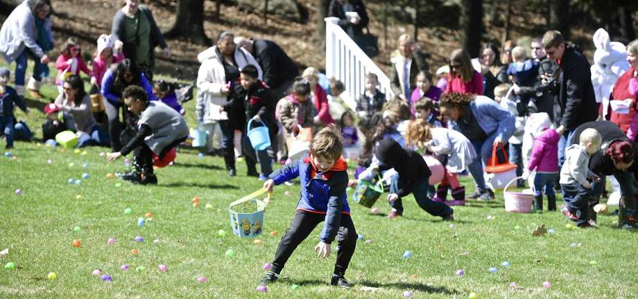 Matteo Melillo, 5, of Brookfield, reaches for an egg during the Macaroni Kid Easter Egg Hunt at Tarrywile Park in Danbury on Saturday. Photo: H John Voorhees III / Hearst Connecticut Media / The News-Times