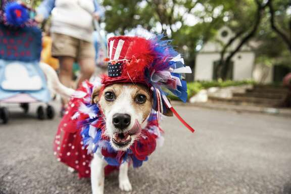 Hilary Debow and Kaleesi participate during the 2016 Fiesta Pooch Parade at Alamo Heights on April 23, 2016.