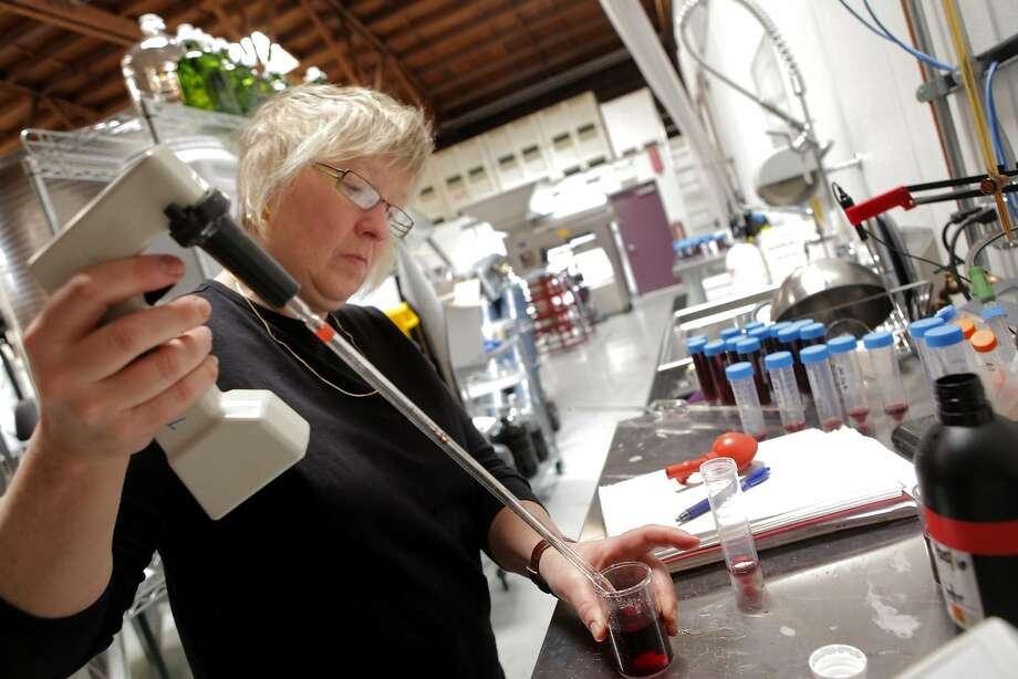 Marilee Shaffer checks the sulfites in the lab at Oakland's Urban Legend winery in 2010. Photo: Lacy Atkins, The Chronicle