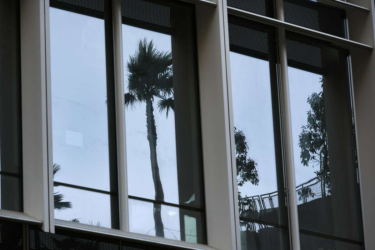 Trees planted by McGuire and Hester Contracting on top of the Transbay Terminal are reflected in the windows of the Salesforce Tower, in San Francisco, CA, on Friday March 10, 2017.