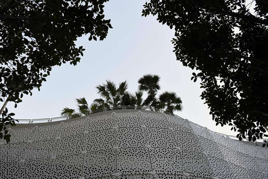 Trees planted by McGuire and Hester Contracting are seen on top of the Transbay Terminal in San Francisco, CA, on Friday March 10, 2017. Photo: Michael Short, Special To The Chronicle