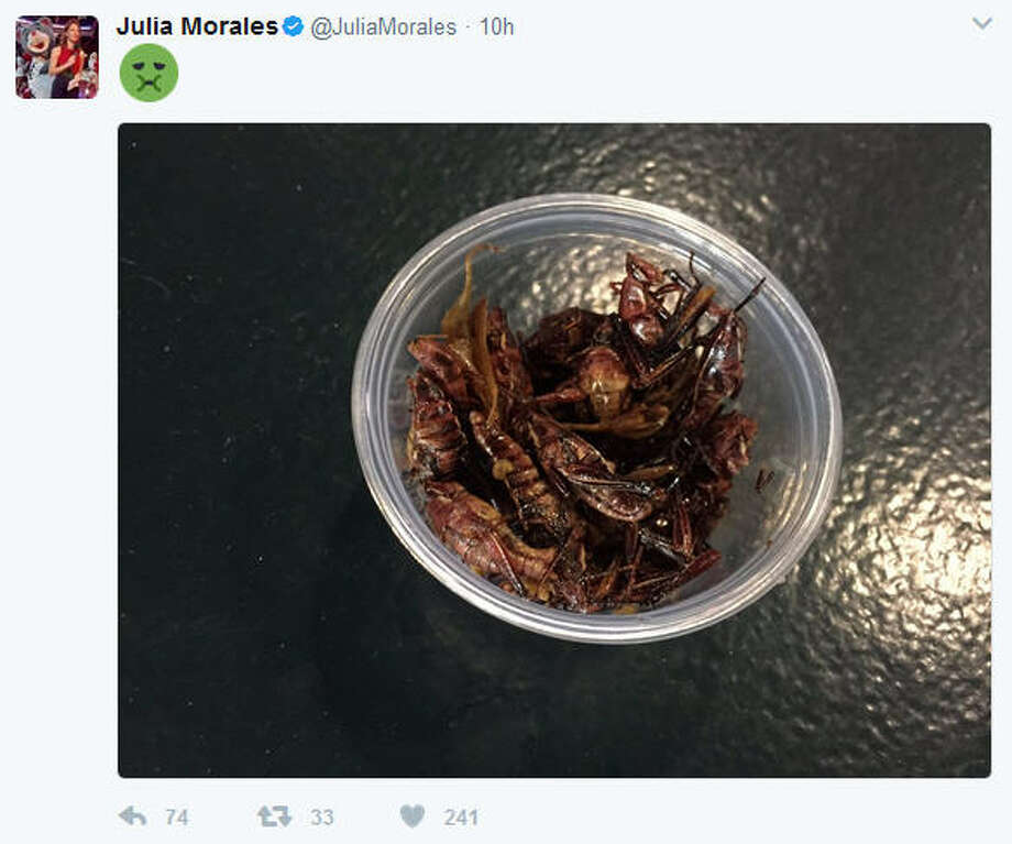 PHOTOS: New food at Minute Maid Park this seasonOn Tuesday night Root Sports' Astros field reporter Julia Morales tried out the new toasted grasshoppers at Safeco Field in Seattle. (Photo: Julia Morales on Twitter)Click through to see what's on the menu at Minute Maid Park right now... Photo: Julia Morales On Twitter
