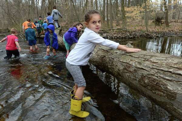 Four year old Lucie Trinchi makes her way across Stony Brook Wednesday, April 12, 2017, during Earthplace Vacation Day daily nature immersion programs where children explore streams, plants, vernal pools, field ecosystems, forests and ponds at Earthplace's 74 acre nature sanctuary in Westport Conn. Earthplace will be hosting a full day family event, Green Day at Earthplace, Saturday, April 29, 2017, starting with a Family Trail Run (and Walk) at 10 am, with many animal encounters and nature science experiments throughout the day and ending with a Rally for the Environment at 2pm.
