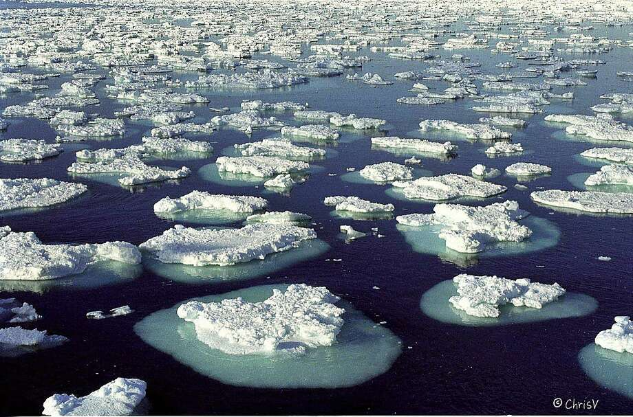 Melting ice floes in Antarctica. Photo: Contributed Photo, Contributed