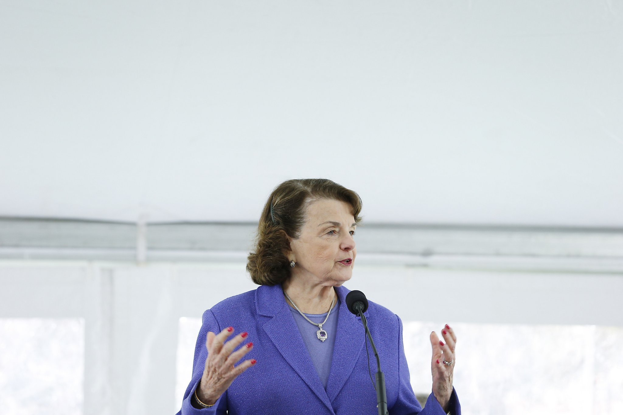 the political history on dianne feinstein The mercury news weather today's e  new senate poll raises questions about dianne feinstein's re  of one of the most intriguing questions in political.