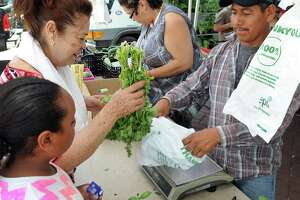 Rosa Azcona buys celantro from Jose Lopez at Smith Acres booth at the Citycenter Danbury Farmers' market Friday, July 10, 2015.