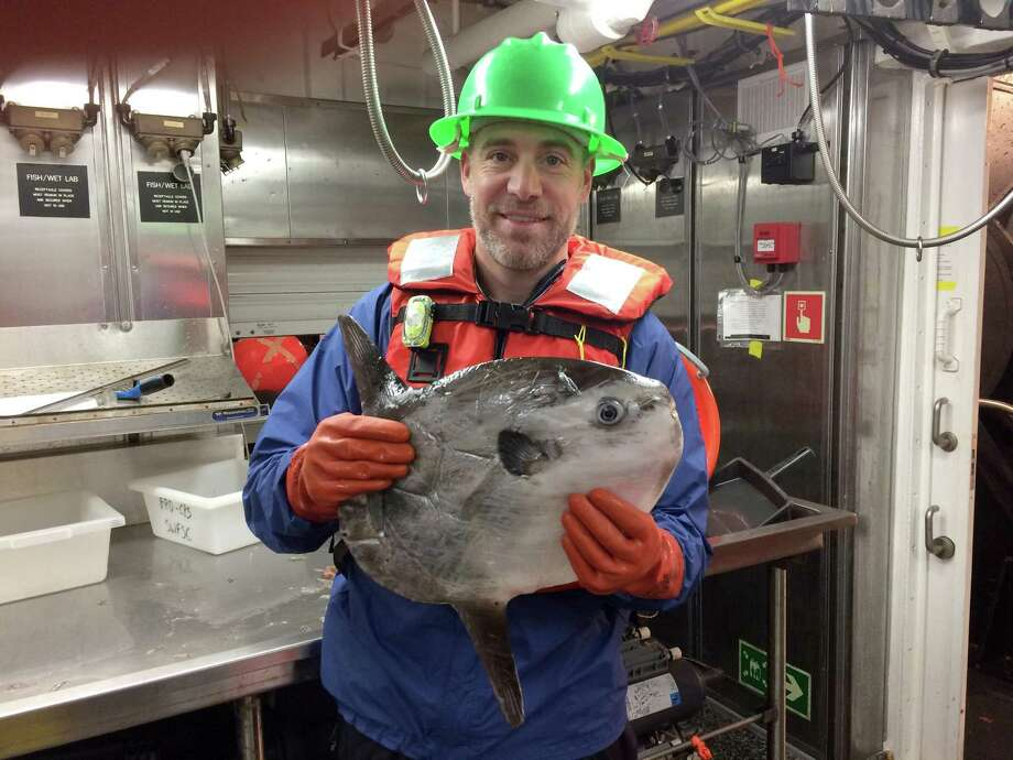 Christopher Tait, a science teacher at New Fairfield High School, sailed aboard NOAA Ship Reuben Lasker to assist scientists on an 18-day survey of sardine populations in the Pacific as part of NOAA's Teacher at Sea Program. Photo: Contributed Photo / Hearst Connecticut Media / The News-Times Contributed