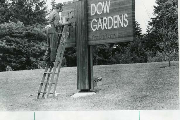 Ernest Ware of Design Craftsmen, Midland, puts on finishing touches to a new sign at Dow Gardens. June 1975