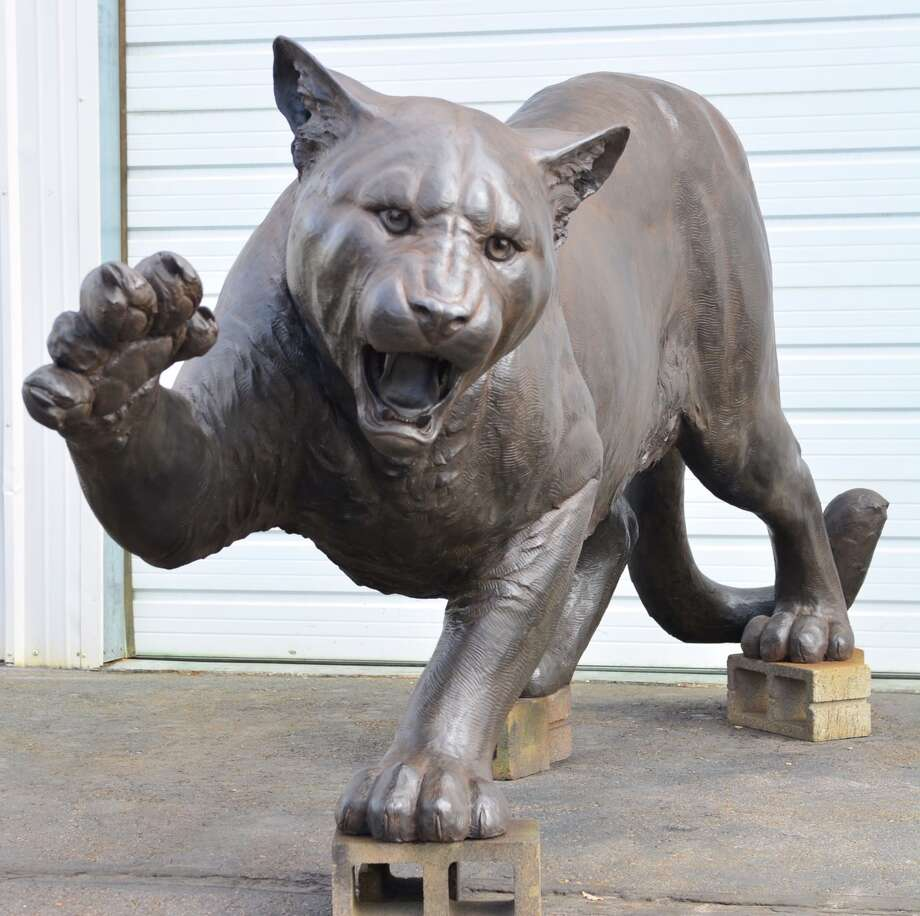 University of Houston's 1,400-pound bronze cougar statue  Photo: University Of Houston Alumni Association