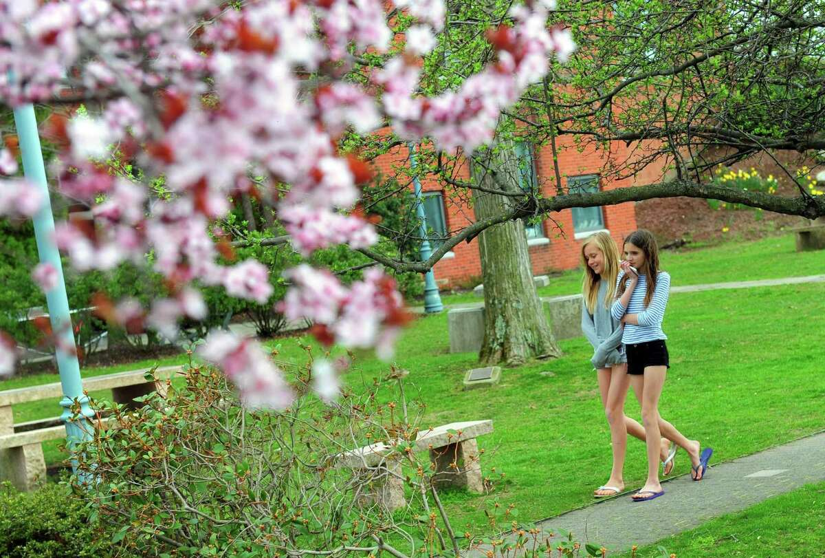 Lila Botur, 12, and her friend Raquel Cross, 12, at right, walk past some newly blooming cherry blossoms along the Saugatuck River in Westport, Conn. on Saturday Apr. 15, 2017.