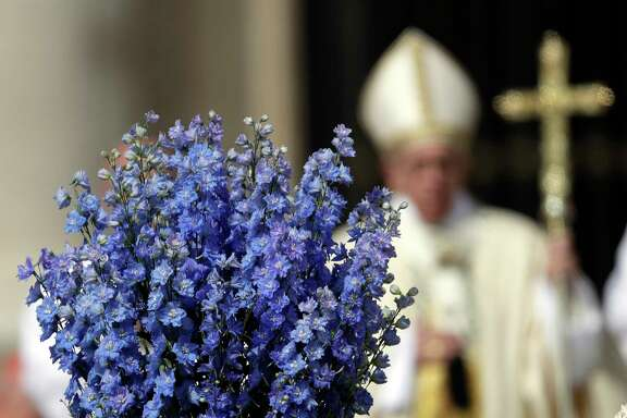 Pope Francis celebrates the Easter Mass, in St. Peter's Basilica at the Vatican, Sunday, April 16, 2017. (AP Photo/Gregorio Borgia)
