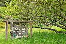Rancho Del Oso, the coastal outpost to Big Basin Redwoods off Highway 1, hosts wildflower weekend April 22-23. The seasonal bridge over Waddell Creek to provide bike-and-hike access to Berry Creek Falls, is expected to be installed soon