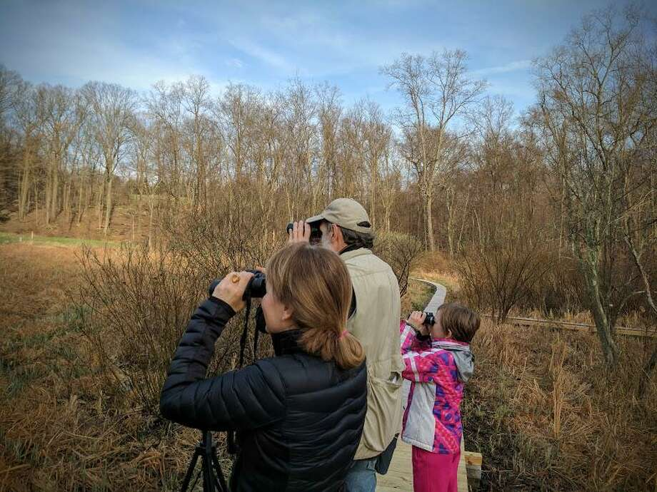 Ted Gilman shows Margaret Gifford and her daughter Sophie white-throated sparrows and red-winged blackbirds. Photo: Jennifer Turiano / Contributed Photo