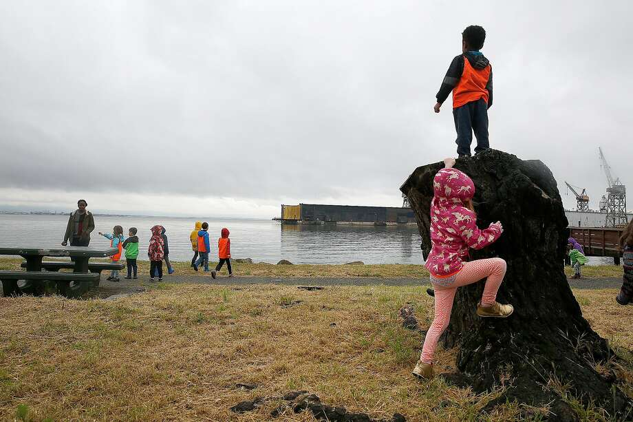 FILE -- Students from AltSchool visit Aqua Vista Park during a cloudy day on Monday, April 17, 2017, in San Francisco, Calif. Photo: Liz Hafalia / The Chronicle 2017