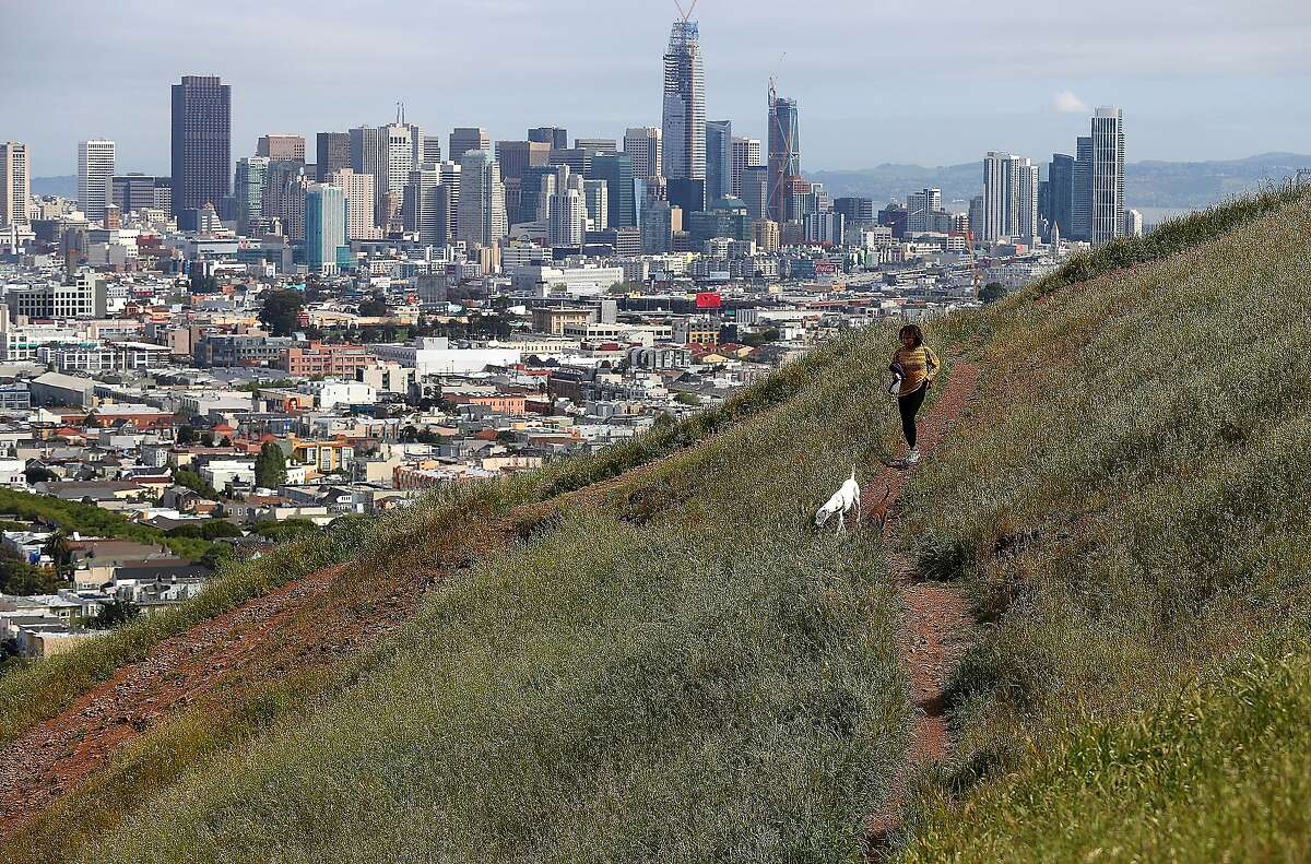 A mountain lion was seen near Bernal Heights Park, pictured here, on Tuesday morning.