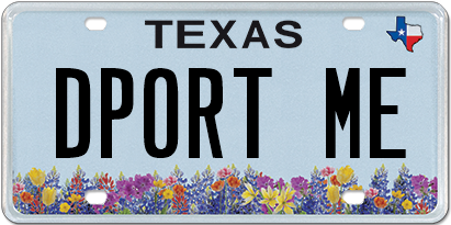 License plates rejected by the Texas DMV in 2017