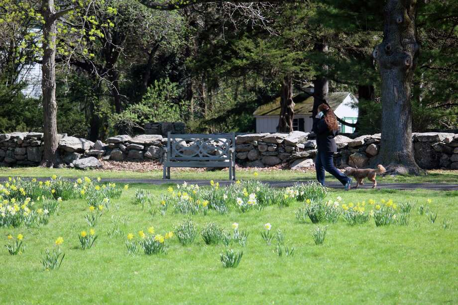 New Canaanites enjoy the spring weather at Irwin Park on April 18, 2017 in New Canaan, Conn. Photo: Justin Papp / Hearst Connecticut Media / New Canaan News