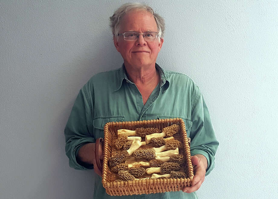 Gary Vondrasek with a batch of morel mushrooms. Photo: Melissa Pitts • Intelligencer