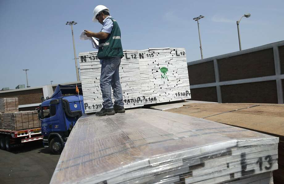 A Peruvian forest service agent looks at documen tation for wood from the Amazon arriving at the port of Callao. About 80 percent of the nation's timber exports are illegal. Photo: Martin Mejia, Associated Press