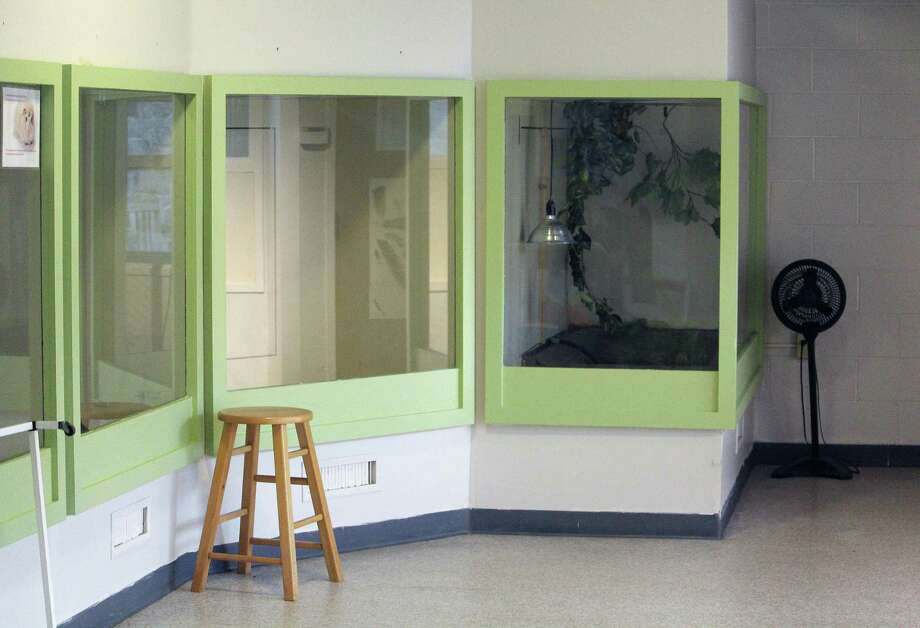 Earthplace's Animal Hall sustained smoke damage during a fire last Friday, shown April 19, 2017 in Westport, Conn. Photo: Laura Weiss / Hearst Connecticut Media / Westport News