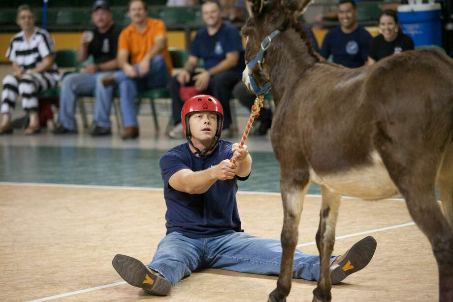 Greg Wells with the Midland Fire Department begs his donkey to move Tuesday night during the departments Donkey Basketball game against the Midland Police Department at the Chaparral Center. Click through the photos to see photos of other Donkey Basketball games.