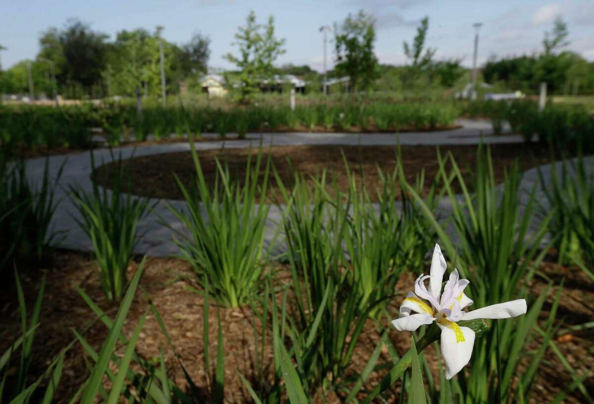 A winding path through Evelyn's Memorial Garden in Evelyn's Park, 4400 Bellaire Blvd.