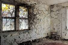 Vines creep into a room in the abandoned Norwich State Hospital.