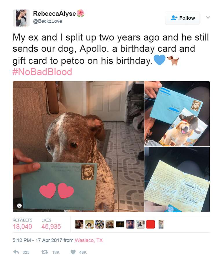 Dog namesA Houston man recently wrote a heartfelt letter to his dog that lives with his ex-wife.Click through to see the top male, female dog names for Houston pups.@BeckzLove