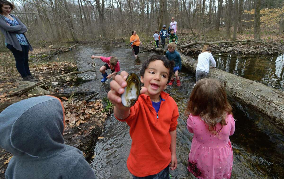 Five year old Paul Schwartzman finds a freshwater mussel shell in Stony Brook April 12 during Earthplace's Vacation Day, a daily nature immersion programs where children explore streams, plants, vernal pools, field ecosystems, forests and ponds at Earthplace's 74-acre nature sanctuary in Westport.