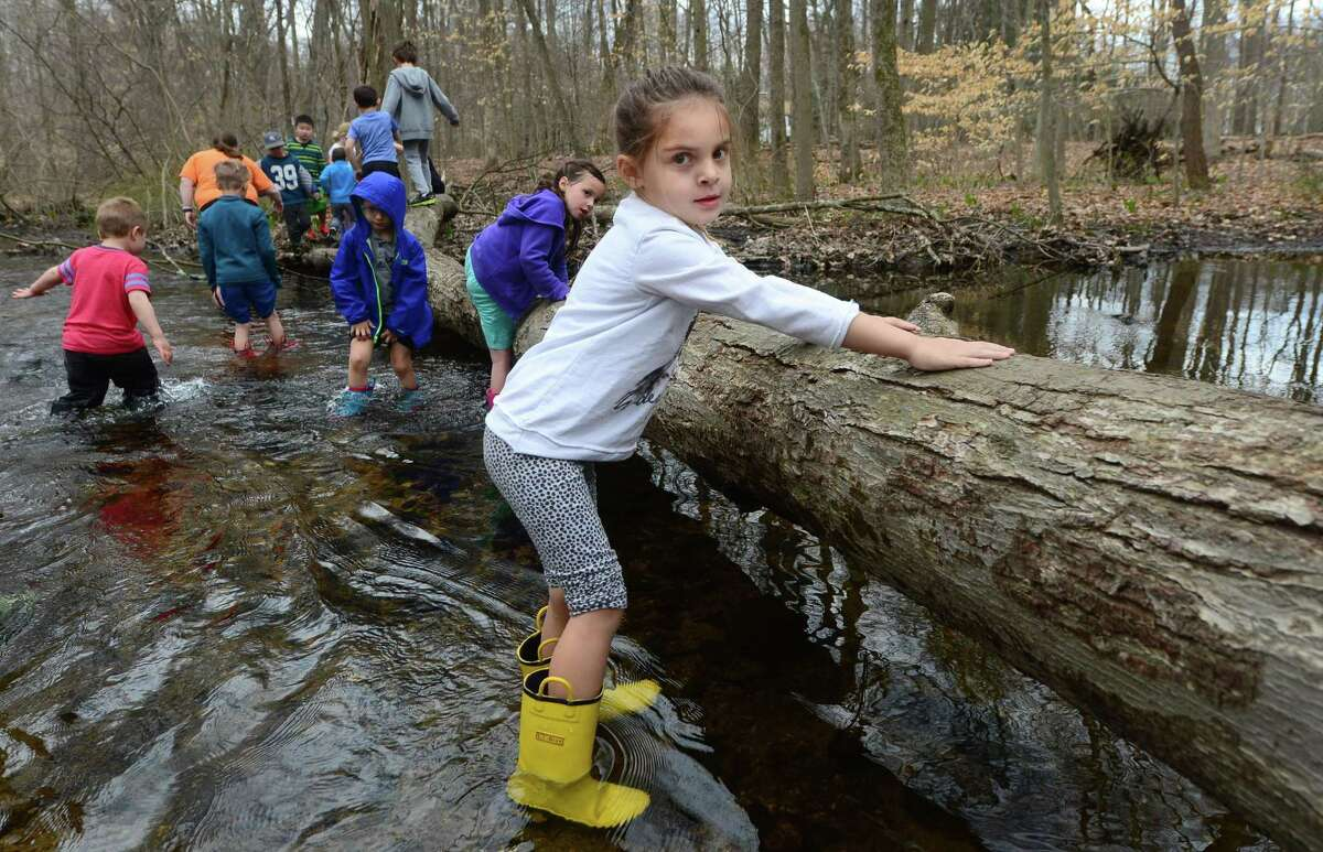 Four year old Lucie Trinchi makes her way across Stony Brook April 12 during Earthplace's Vacation Day, a daily nature immersion programs where children explore streams, plants, vernal pools, field ecosystems, forests and ponds at Earthplace's 74-acre nature sanctuary in Westport.