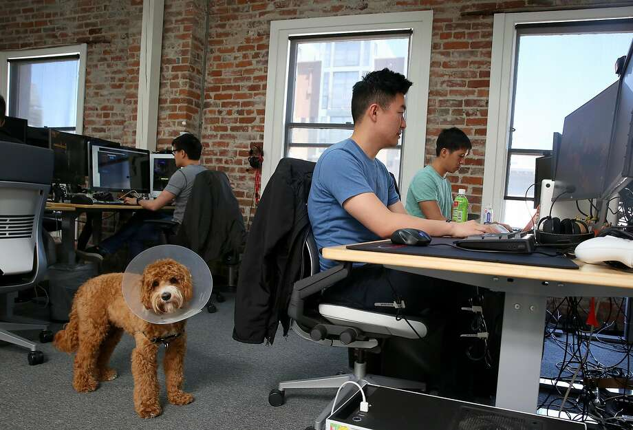 A workspace at Forge, a San Francisco video game startup. The Bay Area remains strong on technology innovation and entrepreneurship, though a new report says the region has fallen in overall startup rankings. Photo: Liz Hafalia, The Chronicle