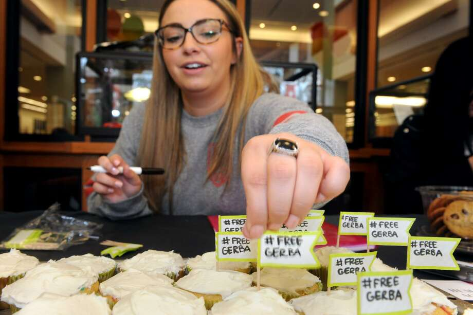 Adrienne Sgarlato, a Fairfield University senior from West Caldwell, NY decorates cupcakes during an event to bring attention to the plight of Dr. Bekele Gerba, a political activist currently in prison in Ethiopia. Photo: Ned Gerard / Hearst Connecticut Media / Connecticut Post