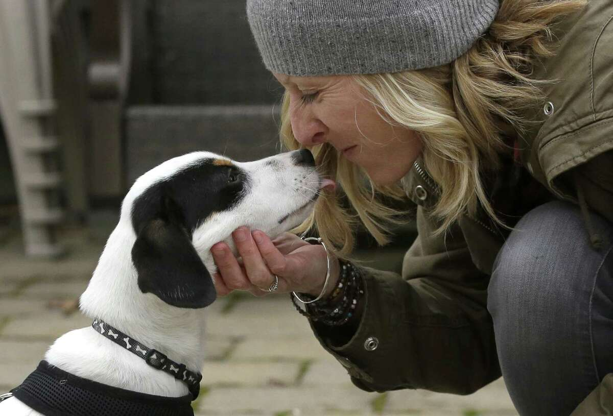 Kate Fredette, of Waltham, Mass., greets the family dog, Roscoe, at their home in Waltham, Mass. The Fredette family found the dog through the online platform How I Met My Dog, that is designed to help humans pick the most compatible mutt possible.