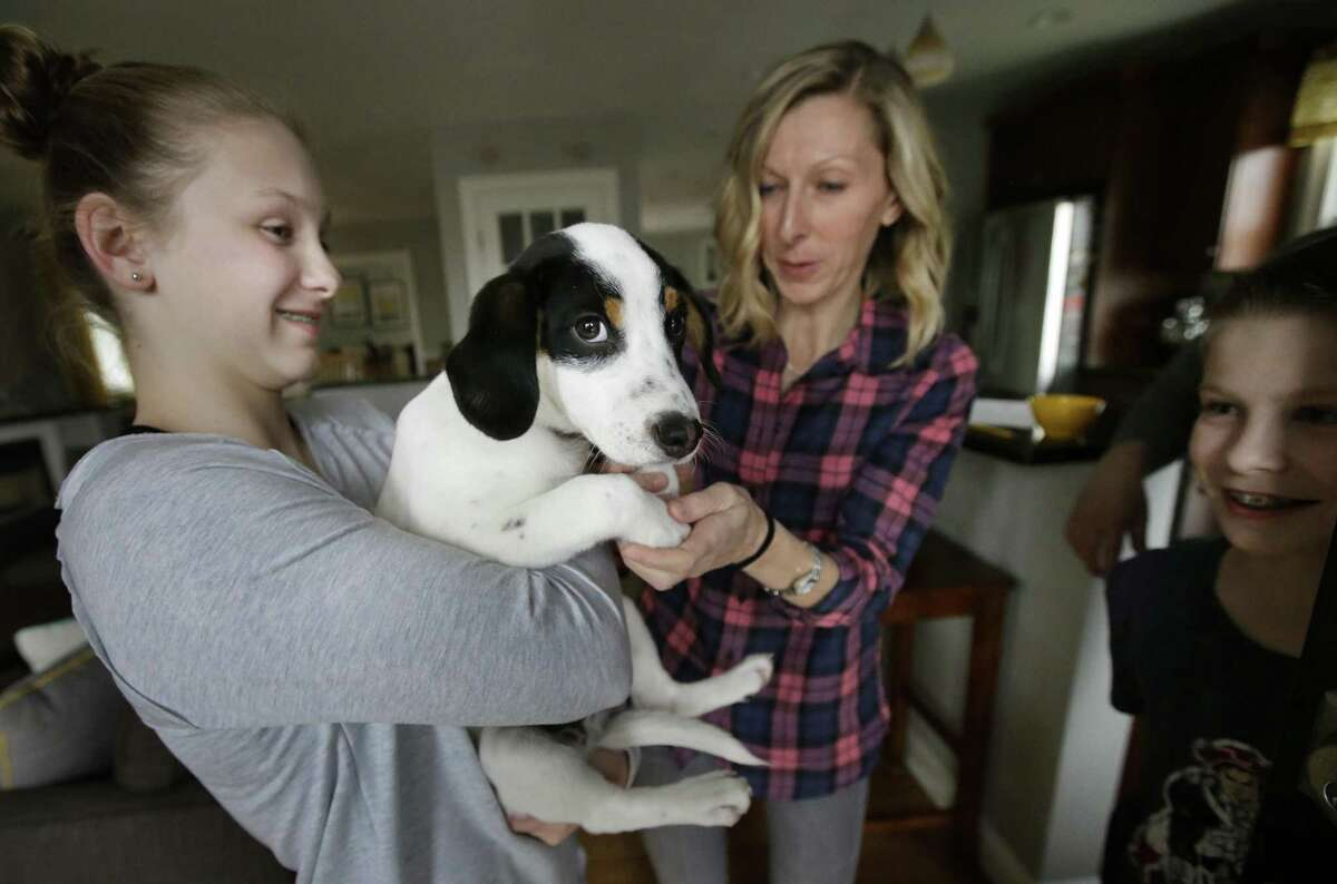 Morgan Fredette, 13, holds the family dog Roscoe as her mother, Kate, and brother Lucas, 11, play with the dog at their home in Waltham, Mass.