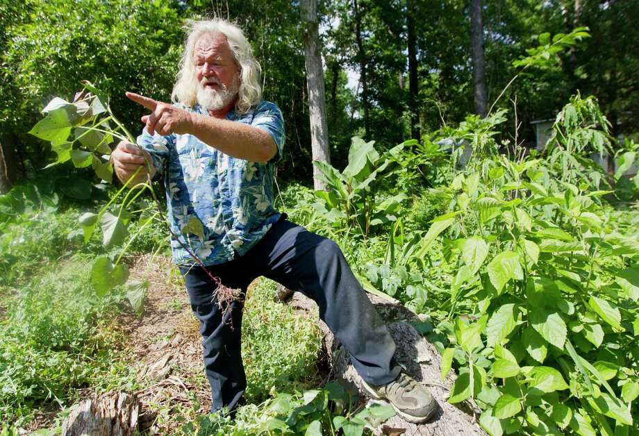 Organic gardener Michael Mansfield points out a bean plant on the property he is working to develop into a community garden, Friday, April 21, 2017, in Willis. Photo: Jason Fochtman, Staff Photographer / © 2017 Houston Chronicle