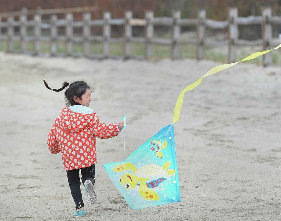 Despite the rain and a low wind, Victoria Jang, 5, of Greenwich, attempted to lauch her turtle kite during the Greenwich Kite Flying Festival that was held at Greenwich Point, Conn., Saturday afternoon, April 22, 2017. Roughly 30 devoted participants launched or attempted to launch their kites during low-tide on the beach at the event. Patricia Toriano of the Greenwich Parks Department said the India Cultural Center of Greenwich, a co-sponsor of the event, could not fly their Patang kites, also known as Indian fighter kites, in the rain because they are made of paper.  Troiano said the Indian Cultural Center kite flyers will be at the point on Sunday at 2 p.m. and if the weather is permitting, will give a Patang flying demonstration as well as show how their kites are constructed. Photo: Bob Luckey Jr. / Hearst Connecticut Media / Greenwich Time