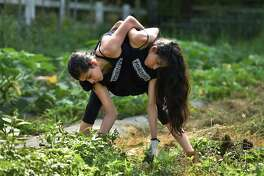 Conjoined twins Carmen and Lupita Andrade pull weeds in the vegetable garden at the Nonnewaug High School farm while working last summer. The twins are enrolled in the school's agriscience program and hope to study animal husbandry or veterinary medicine in college. (Cloe Poisson/Hartford Courant/TNS)